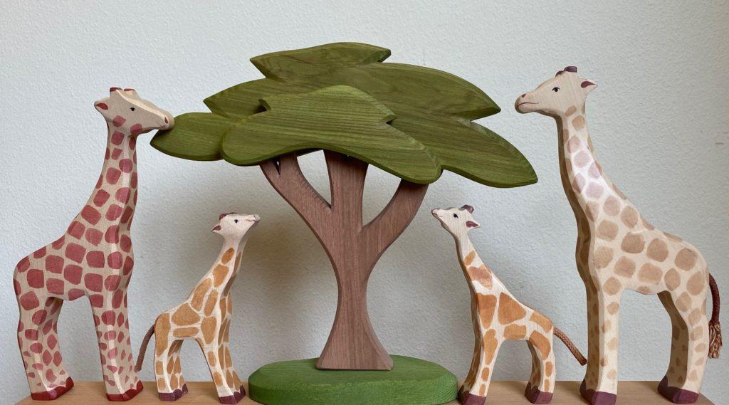 holztiger giraffes and ostheimer african tree