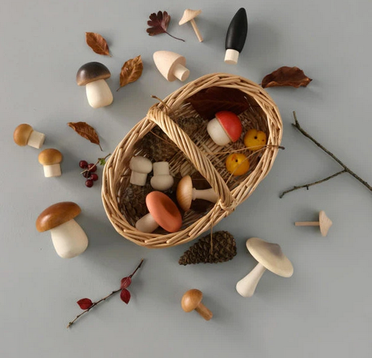 moon picnic mushrooms